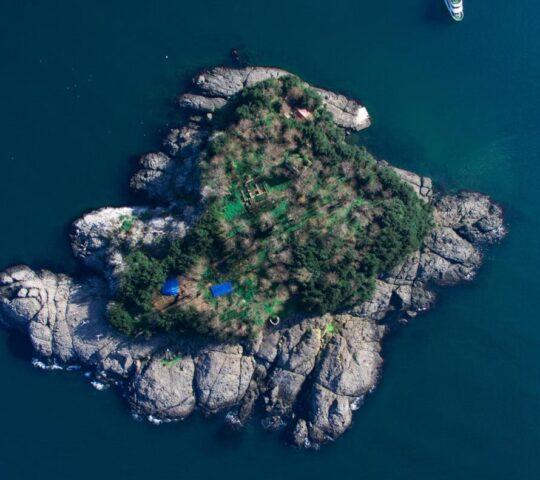 Giresun Adası