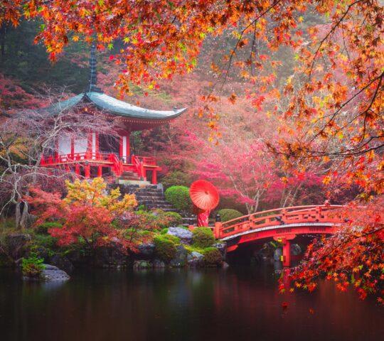 Daigo-ji Budist Tapınağı
