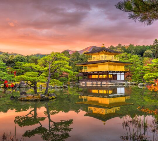 Kinkaku-ji Budist Tapınağı (Altın Köşk)