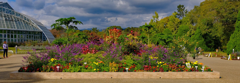 Kyoto Botanik Bahçeleri