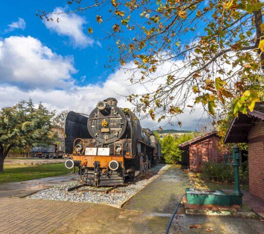 Selçuk Çamlık Buharlı Lokomotif Müzesi