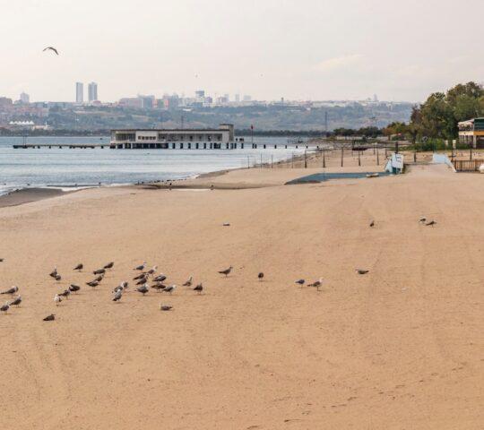 Florya Güneş ve Menekşe Plajları